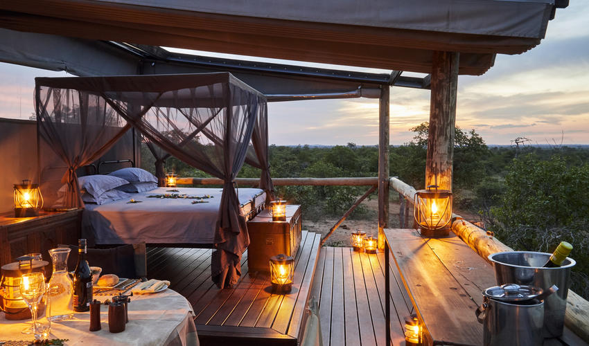 Motswari Private Game Reserve | Giraffe's Nest