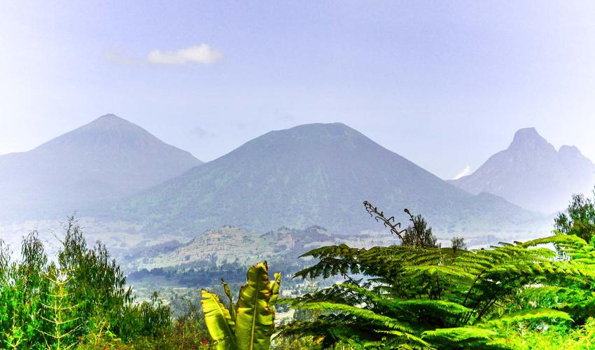 View from Sabyinyo Silverback Lodge
