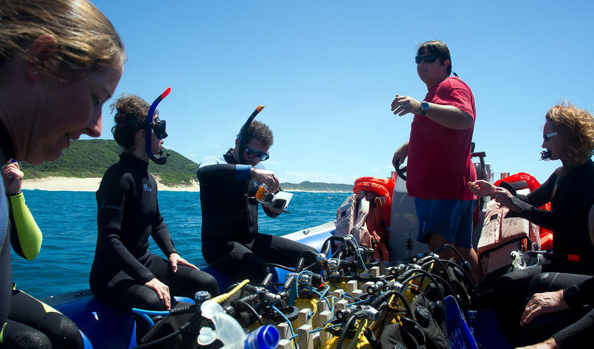 Diving at Rocktail rates among the top ocean diving experiences in the world