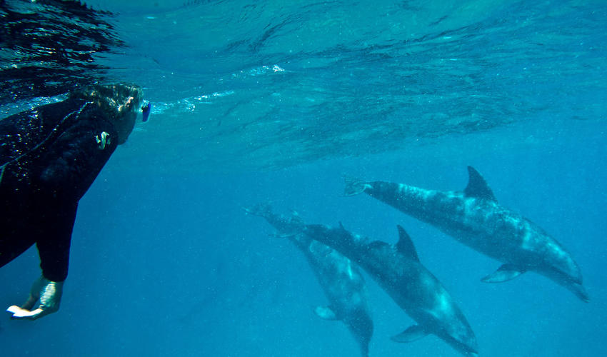 SCUBA diving at Rocktail