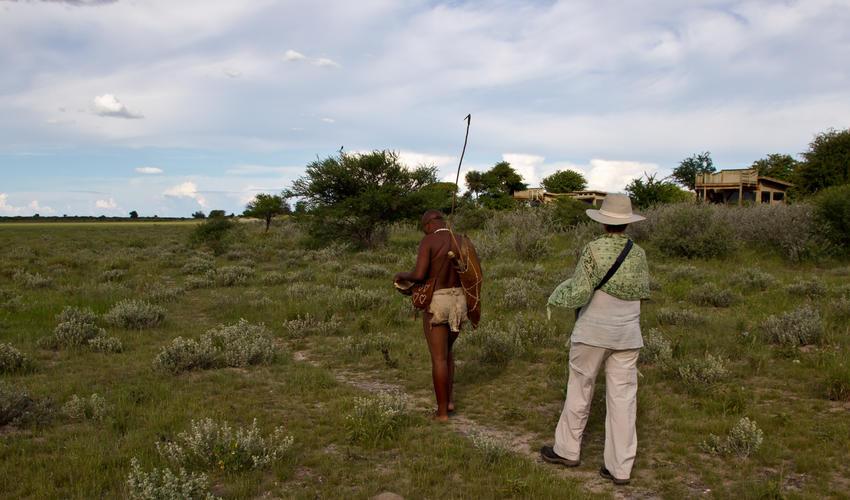 A guided, interpretative Bushman walk