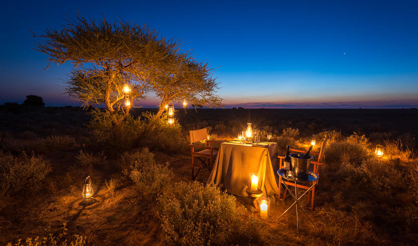 Special dinner setting under the stars