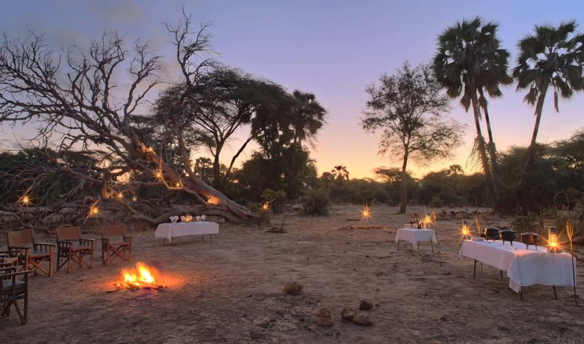 Dine under the twinkling African sky