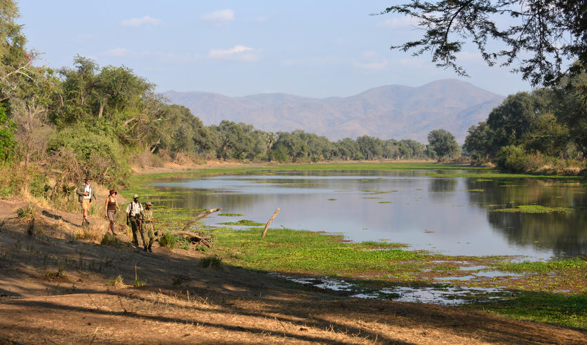 Soak up some of the most amazing scenery in the Lower Zambezi