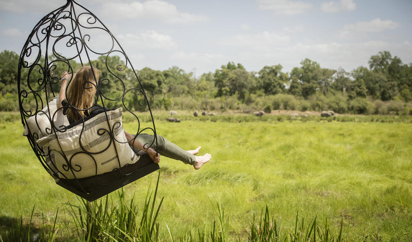 Swing chair overlooking the Marsh