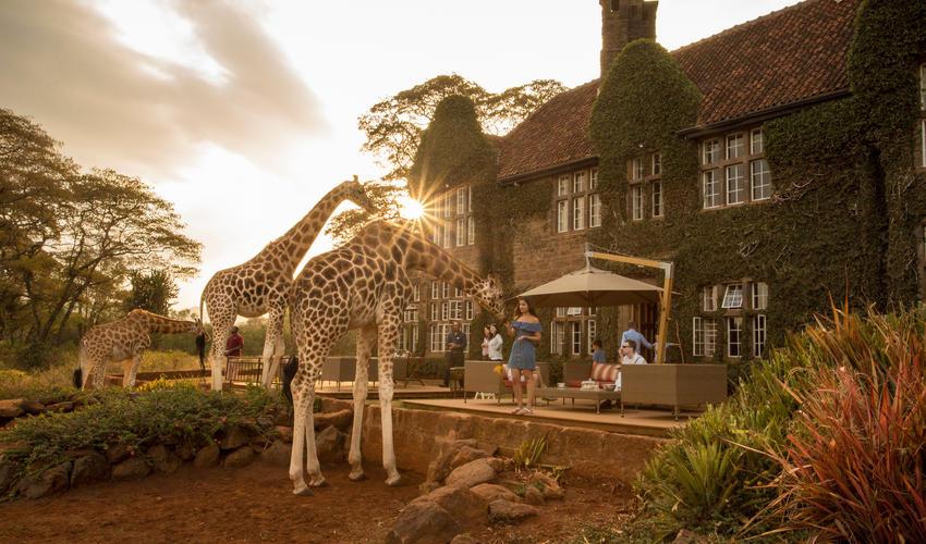 Giraffe Manor exterior