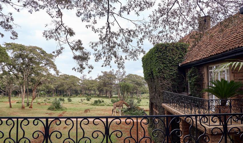 Front view from Karen Blixen's balcony