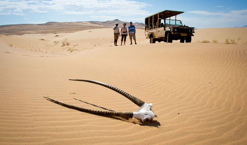 Unforgettable outing in the dunes of the Namib