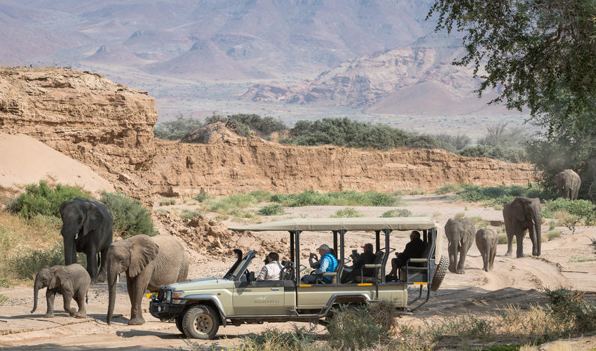 Game drive with elephant in the Haub River Valley