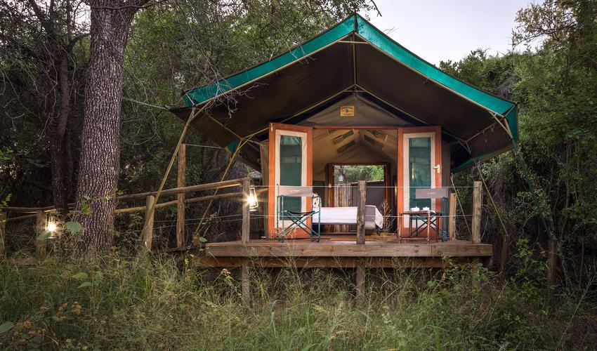 Elevated, Luxury Tents