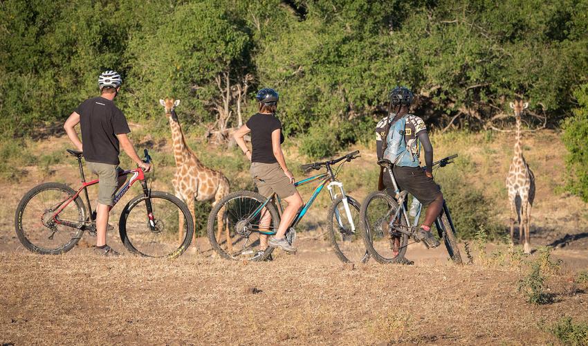 Mountain Biking at Mashatu for all levels of riders