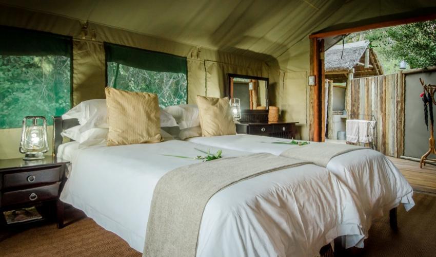 Tent Camp Interior