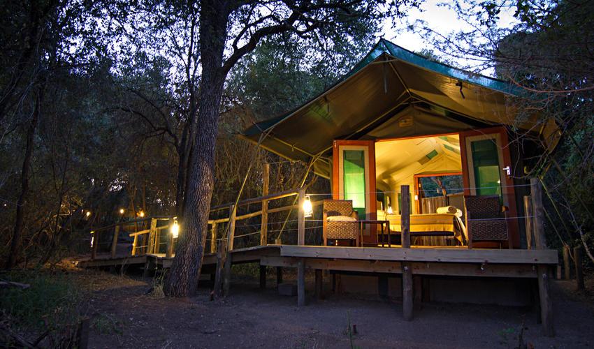 Tent Camp Room Exterior