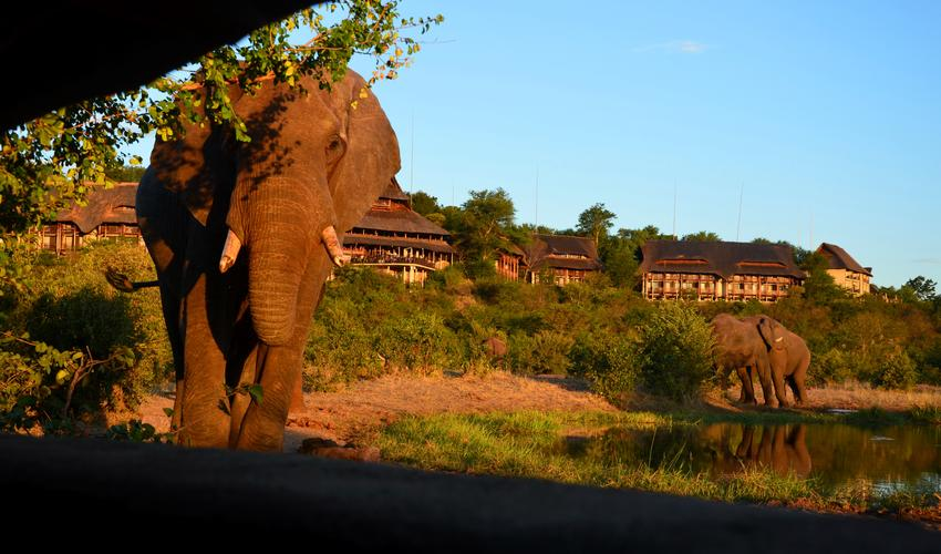 View from the Siduli Hide