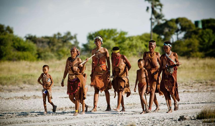 Learn about the ways of the Zu/'hoasi Bushmen