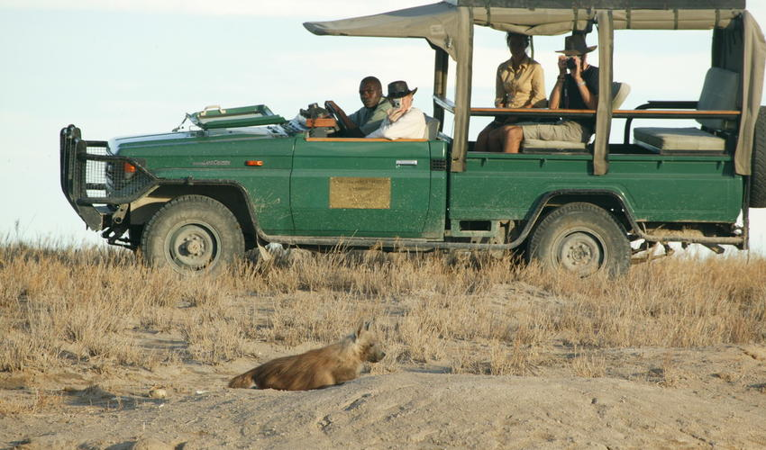 Enjoy morning, afternoon or night drives within the concession