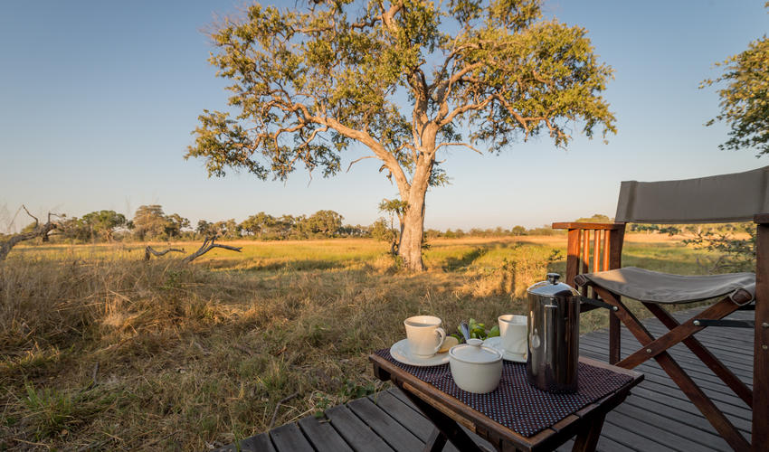 Breakfast with a View of the Selinda Reserve