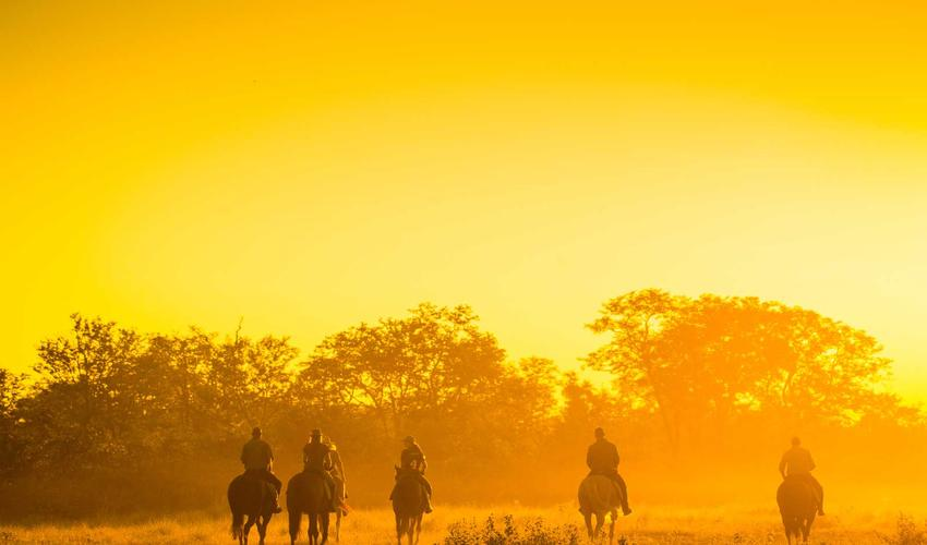 Horse riding at sunrise