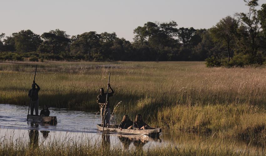 Mokoro safari