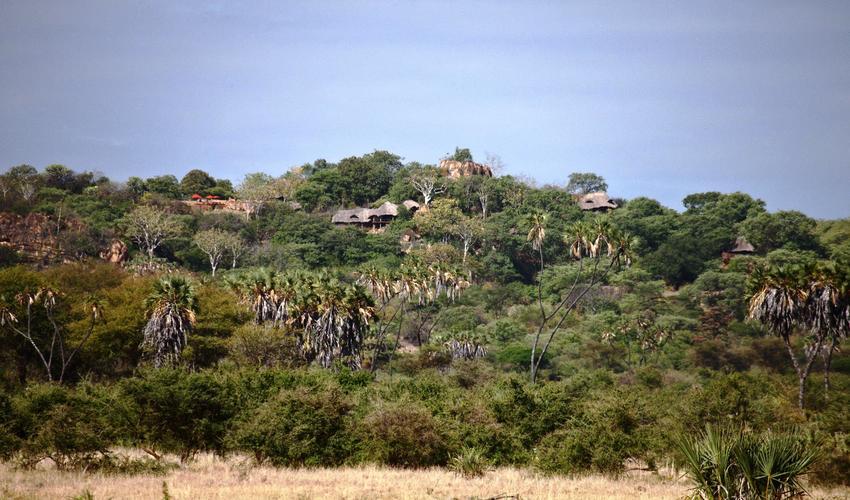 Elsa's Kopje blending into Mughwongo Hill