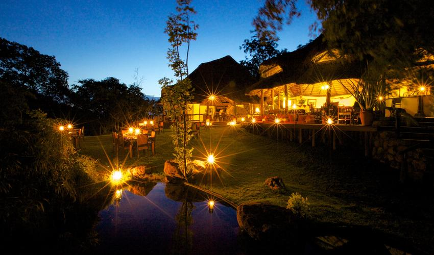 Dinner is always enjoyed under the stars - main bar and dining area with garden and fish pond