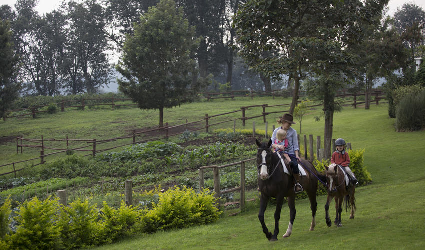 Horse riding for a fun way to explore the coffee fields and surrounding countryside
