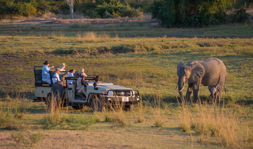 Game viewing experiences