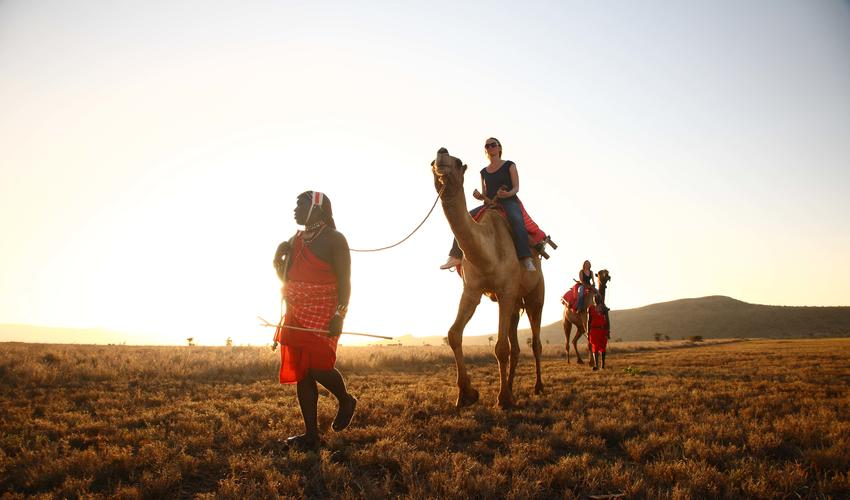 Guest Activities Camel-trekking across Lewa