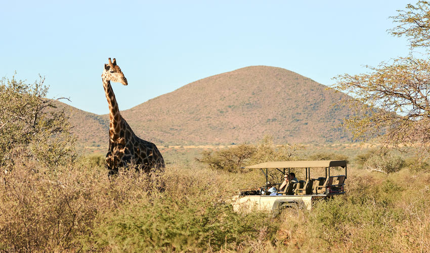 Tailor made safaris