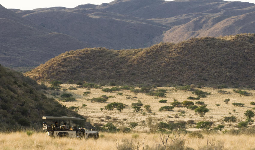 Guests enjoy a private vehicle, guide and tracker