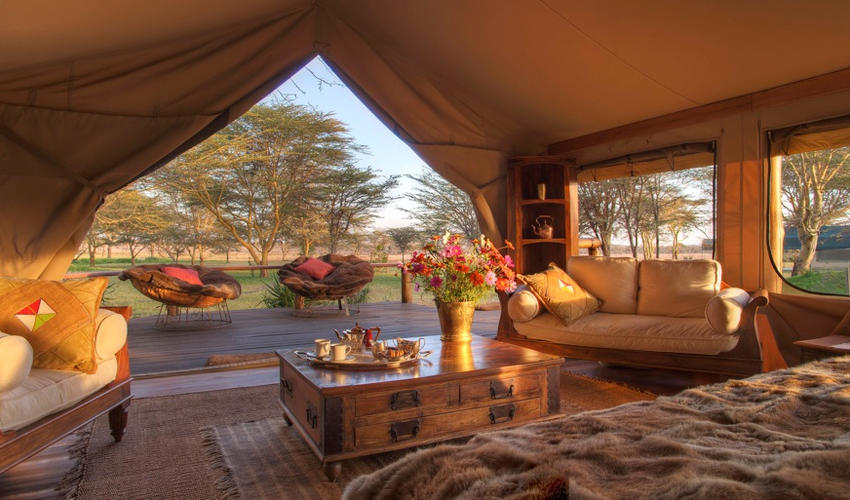 Lying in your sumptuous bed, you could be forgiven for refusing to move much further for the rest of the day. The view from each of these stunning luxury tented rooms is extensive; across the lush lawns at Sirikoi to the waterhole beyond and further away the dry wilderness of Lewa Wildlife Conservancy.