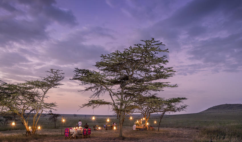 A magical scene for an unforgettable bush dining experience