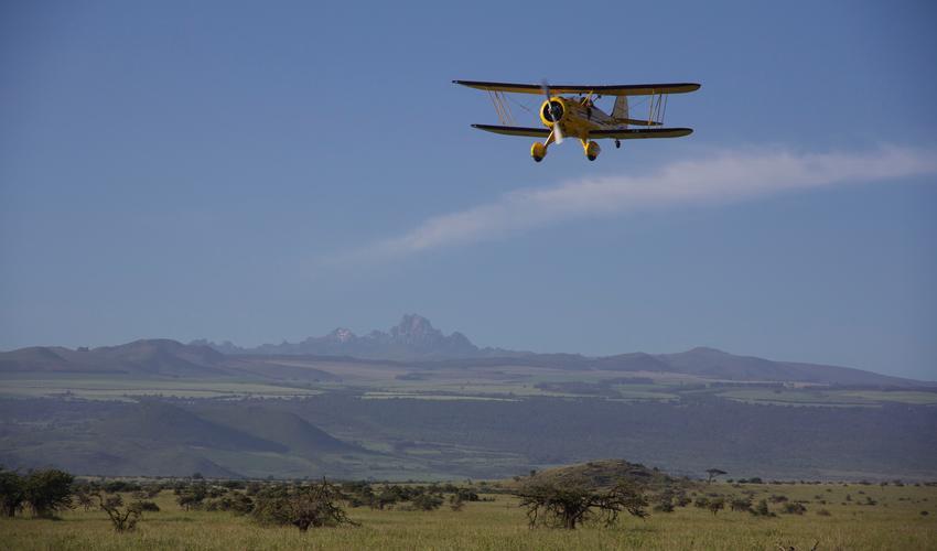 Activities - Bi Plane