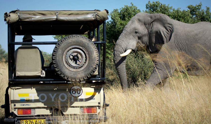 Ghoha Hills Luxury Safari Camps Amp Lodges Extraordinary