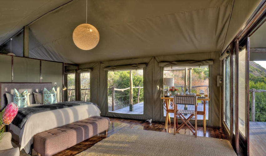 Tent 4 Interiors