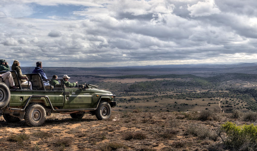 Looking out over Amakhala Game Reserve