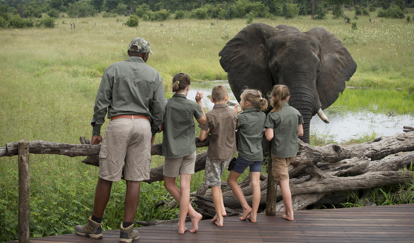 Children Learning from our Professional guides