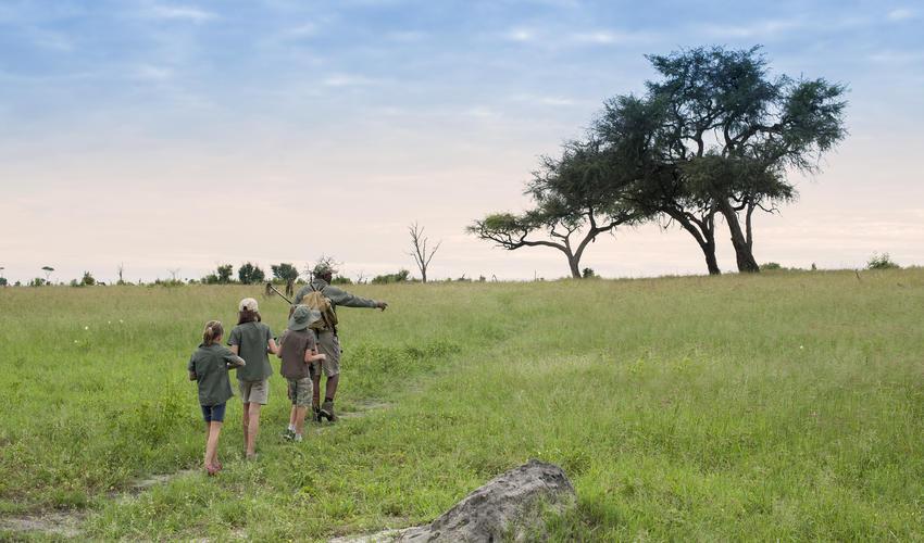 Guided Walks for Children at Somalisa Acacia