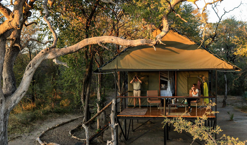 Bomani Tented C& | Luxury Safari C&s u0026 Lodges | Extraordinary Journeys & Bomani Tented Camp | Luxury Safari Camps u0026 Lodges | Extraordinary ...
