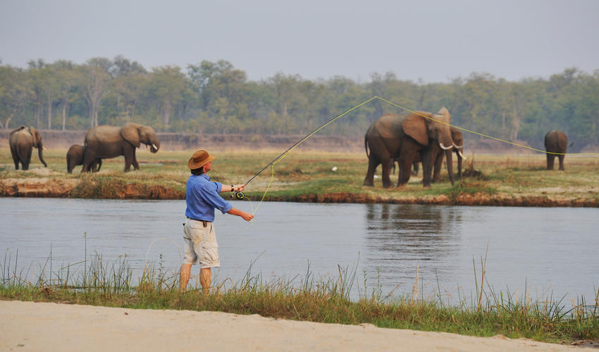 Fly Fishing off the banks of the Zambezi River for the elusive Tiger Fish