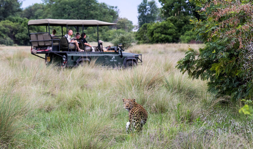 Game Drive Experience