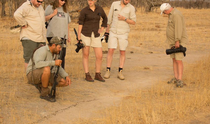 Camp Hwange guides are qualified, professionals and enjoy sharing their love of nature and the great outdoors