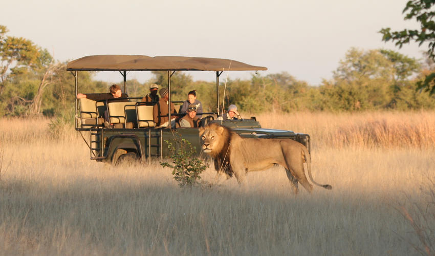Hwange offers fantastic game drive experiences