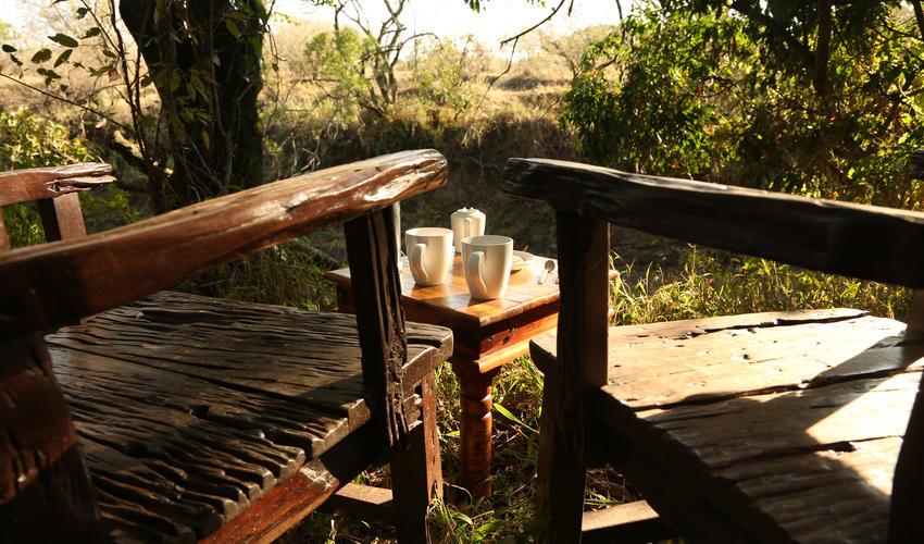 Morning Coffee in the Bush