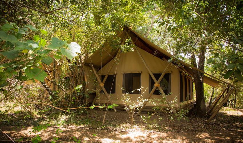 Mara Expedition Tent Exterior View
