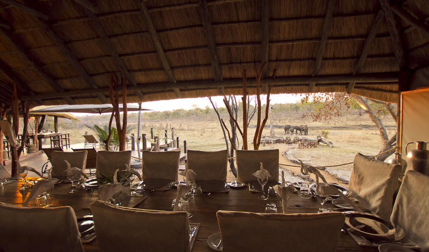 Dining with an African inspired view