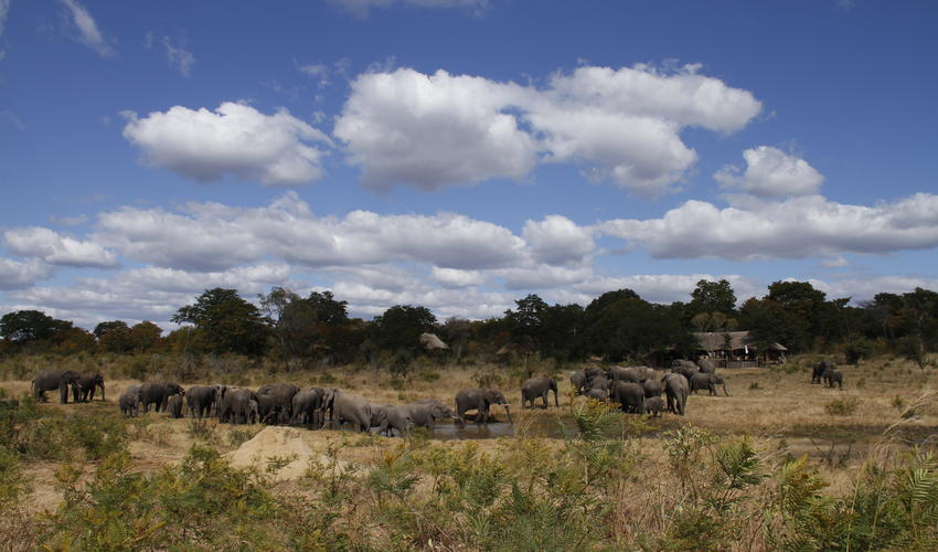 Breathe taking watering hole on Khulu Lodge's private concession