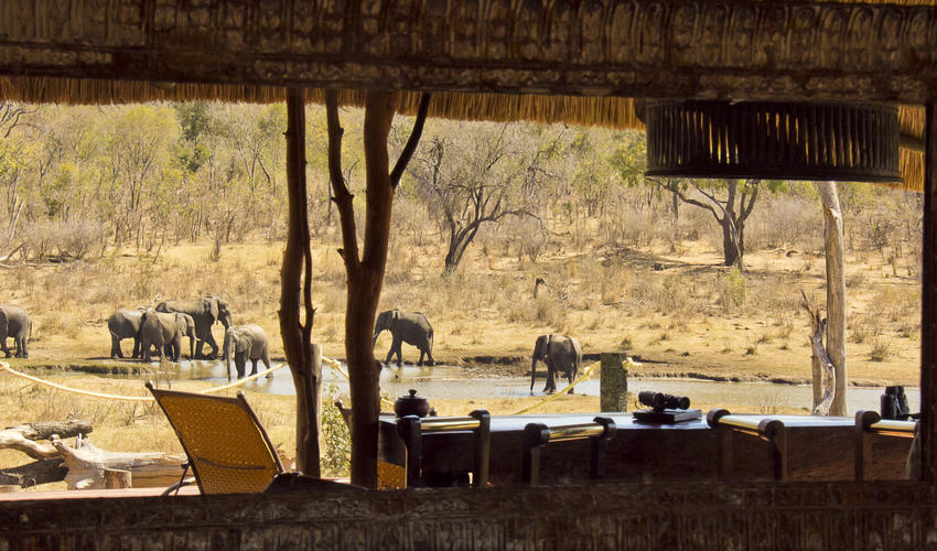 Incredible view of the watering hole from the main relaxation area at Khulu Lodge
