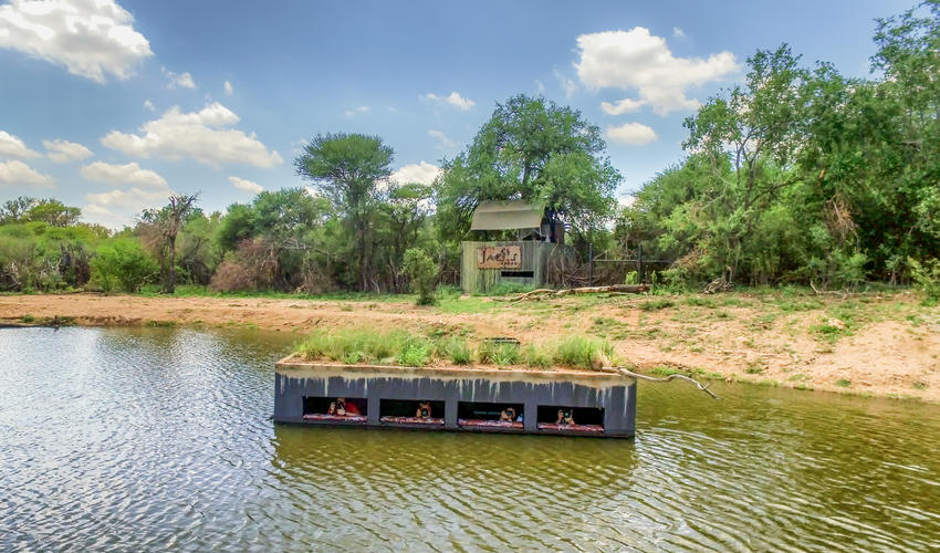 The Terrapin Hide is located in the middle of a waterhole, with easy access from Jaci's Tree Lodge and within walking distance of Jaci's Safari Lodge. The hide, which is accessed via a submerged tunnel and features a water-level viewing window, has established Jaci's Lodges as a premium photographic safari destination. The low angle gives photographers an unparalleled opportunity to capture eye-level images of the plethora of animal life that visits the waterhole daily. Its west-facing orientation guarantees soft morning light and warm backlit silhouettes in the late afternoon. From the safety and unique vantage point of the hide, you might even get lucky and capture an elusive leopard, swimming elephants or African wild dogs.