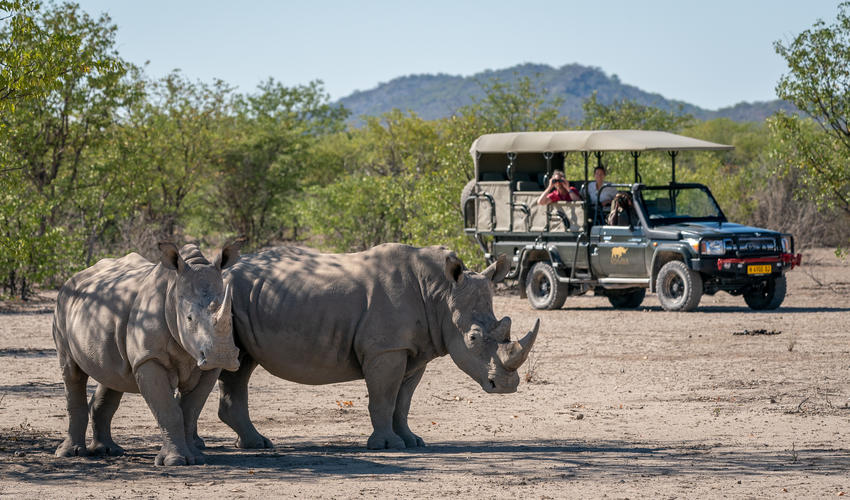 Game drive at Ongava Game Reserve